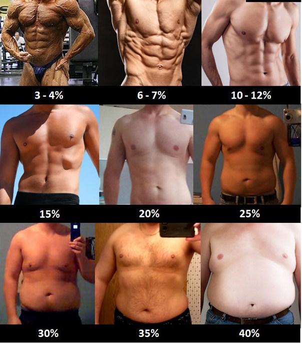 body-fat-percentage-men.jpg.9850250958919a408a7cd01f81fcbf8b.jpg.48146cf8cd4ede3777a8868582482420.jpg